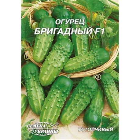 Семена огурца Бригадный F1 пакет-гигант