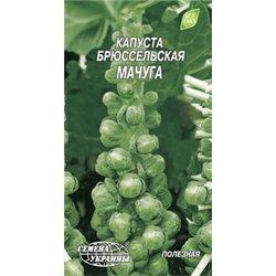 Семена капусты брюссельской Мачуга