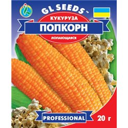 Насіння кукурудзи Поп Корн