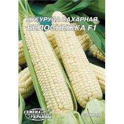 Насіння кукурудзи цукрової Білосніжка F1