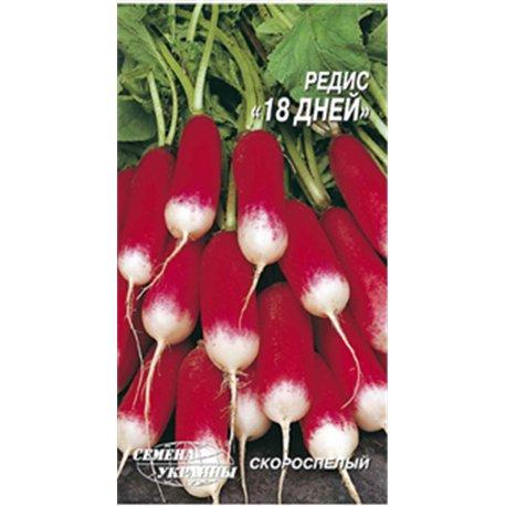 Семена редиса 18 дней