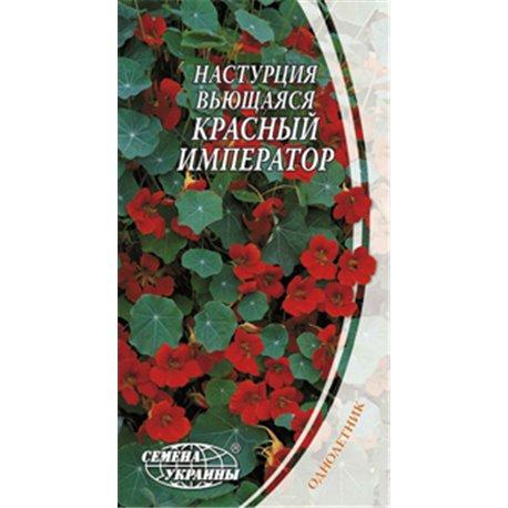Семена настурции вьющейся Красный император