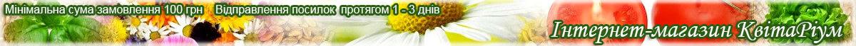 Насіння овочів та багаторічних квітів купити по доступних цінах недорого в Україні