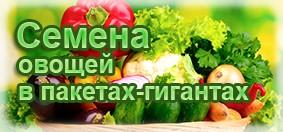 Купить семена овощей в больших пакетах