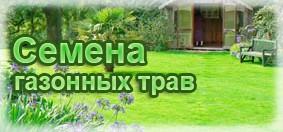 Купить семена газонных трав