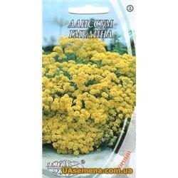 Семена алиссума Гмелина (горный)