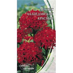 Семена лихниса халцедонского красного